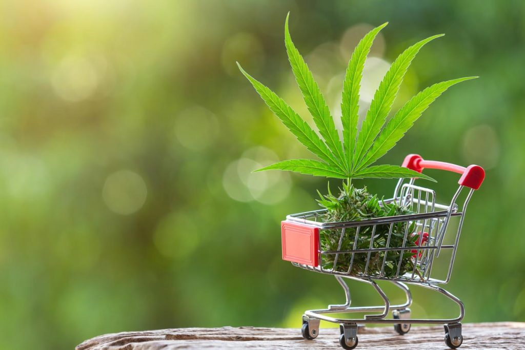 acheter des graines de cannabis