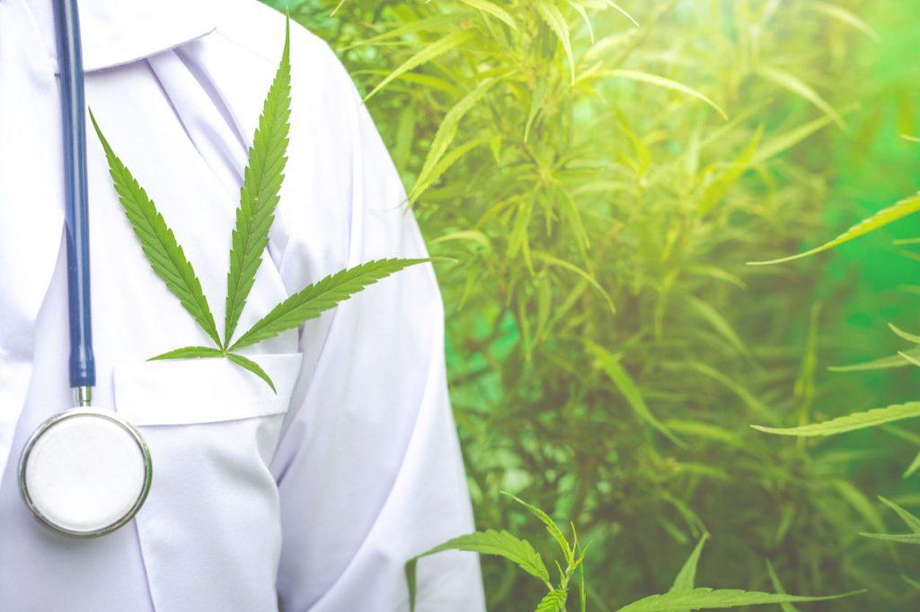 cbd cannabis légal